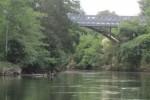 The Waikato River at the Narrows, Tamahere