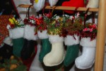 Put your best foot forward for the Tamahere Christmas Festival