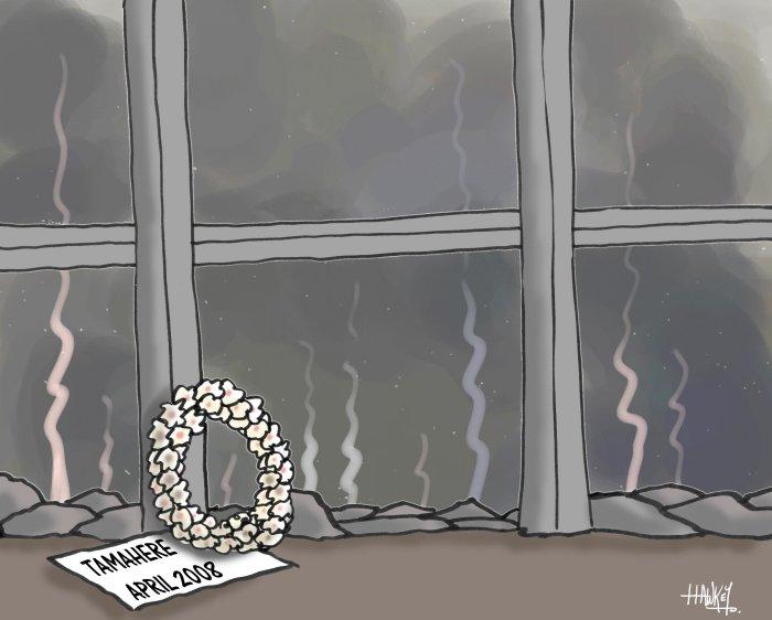 Tamahere fire cartoon