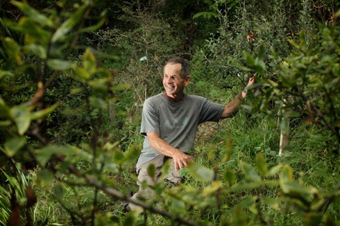 Leo Koppens in the gully on his Tamahere property. (Photo: Bruce Mercer, Waikato Times)