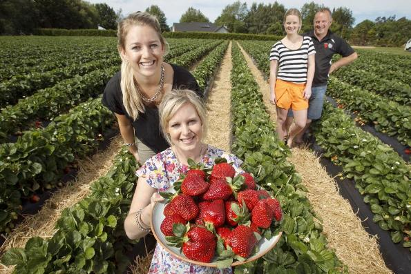 The McMahons, from left, Haley, Emma, Kate and Gary, at The Strawberry Farm