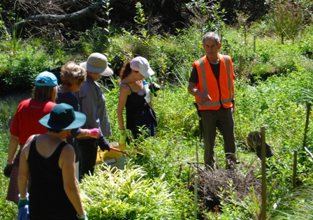 Leo Koppens, right, giving tips to the group attacking weeds