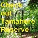 Tamahere Reserve